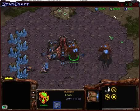 [Starcraft MOD - Conflict Of The Stars] Overlord
